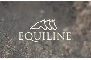 SS20 Equiline
